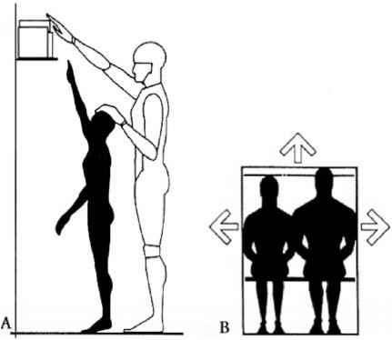 Kitchen Anthropometric Data