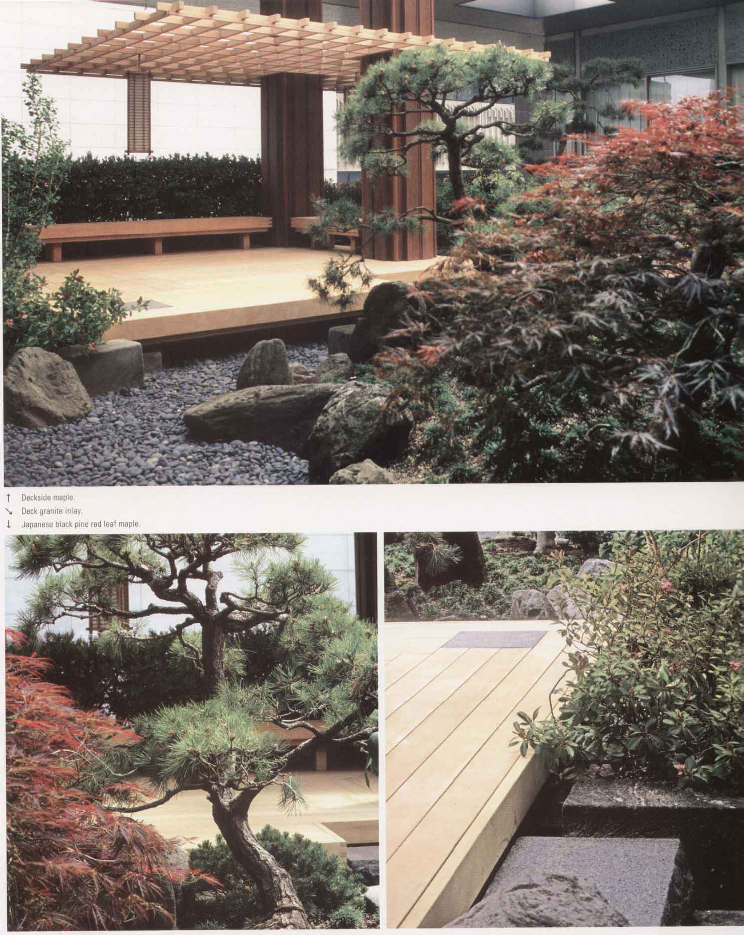 Suzman cole design associates landscape design for Associate landscape architect